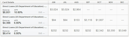 Mint student loan payment schedule